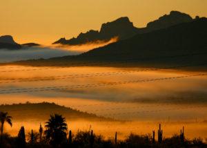 Fountain Hills, AZ, under a blanket of fog as seen from my backyard a few years ago.